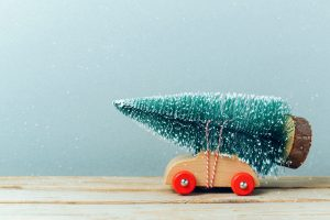 A real or artificial Christmas tree – which is better?